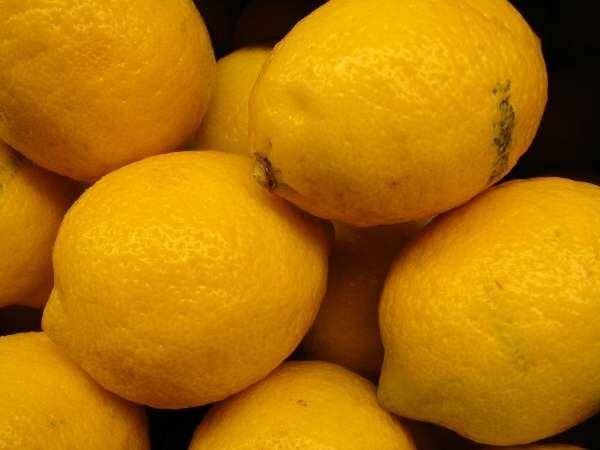 Citrus limon specie della flora italiana for Periodo potatura limone