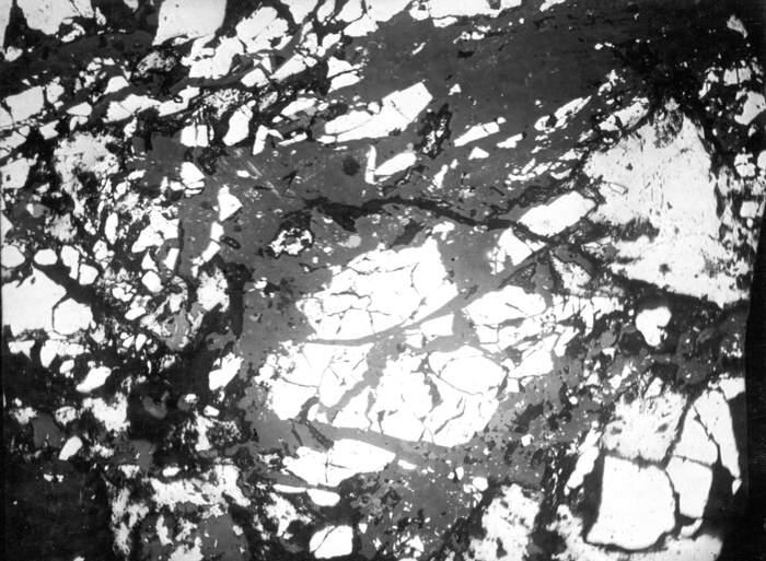 Photomicrograph: Polished section showing arsenopyrite fragme.